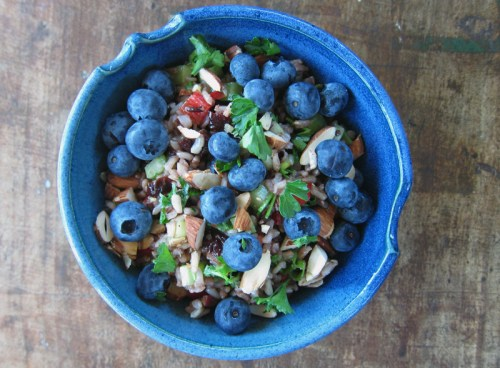 blueberry & wild rice summer crunch salad | everybody likes sandwiches