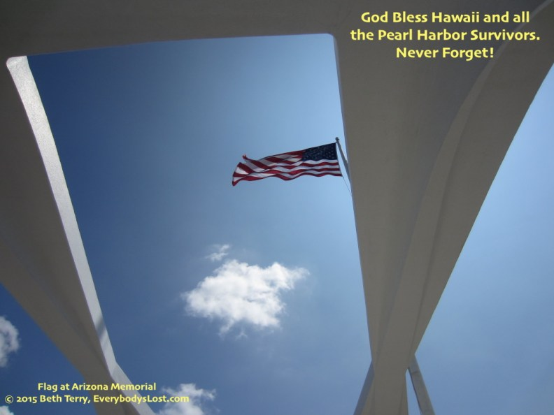 Pearl Harbor, © 2015 Beth Terry