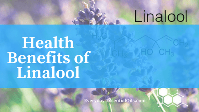 Essential Oils With Linalool