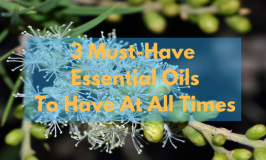 3 Essential Oils