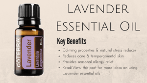 Lavender Essential Oil Review – What Benefits Do You Get From Lavender?