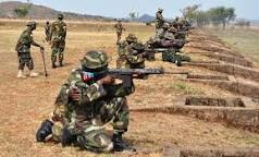 Mali Army begs for Nigeria's expertise to tackle insurgents