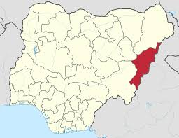 Adamawa Killings: Amnesty, Air Force disagree
