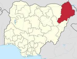 On military's advice, Borno extends curfew date by a week