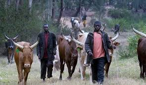 As Benue fixes Friday for another mass burial, Anambra group wants anti-grazing law