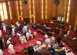 Videos: Joint session of National Assembly; the affront on Senate