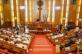 (Opinion) Much ado about NASS leadership election