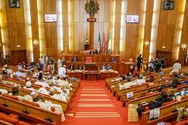 (Opinion) Ali Ndume and the leadership of the 9th Senate