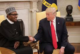 US to Buhari Campaign: We are not partisan (and) Nigeria's election important to neighbours and friends