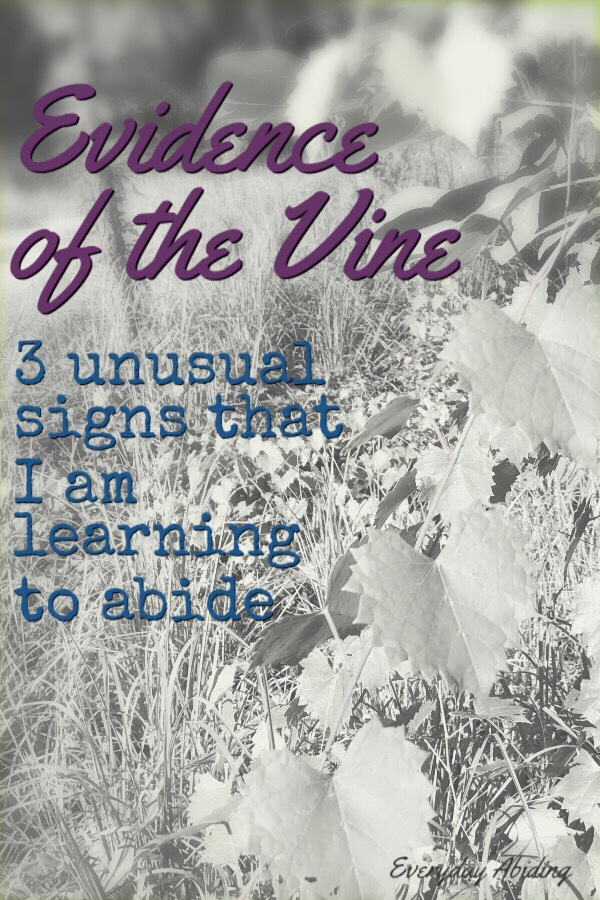 Evidence of the Vine – 3 Unusual Signs that I am Leaning to Abide