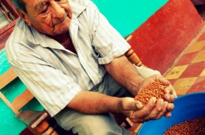 Pigeonpea: Tackling Root Causes of Poverty in Central America