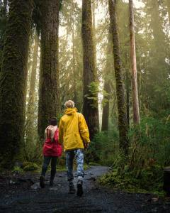 Hoh Rainforest, Every Day A Vacation USA Photography Portfolio