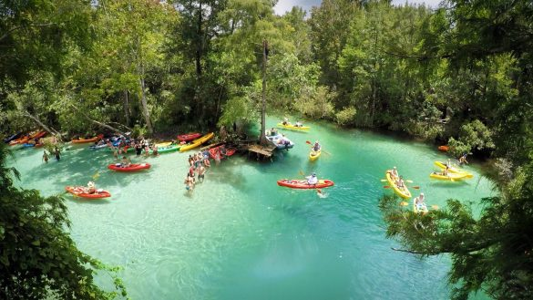 5 Things To Do In Week Watchee Springs, Florida, USA Photography Aerial & Drone Photography