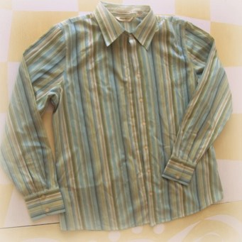 original shirt: pinstriped peter pan