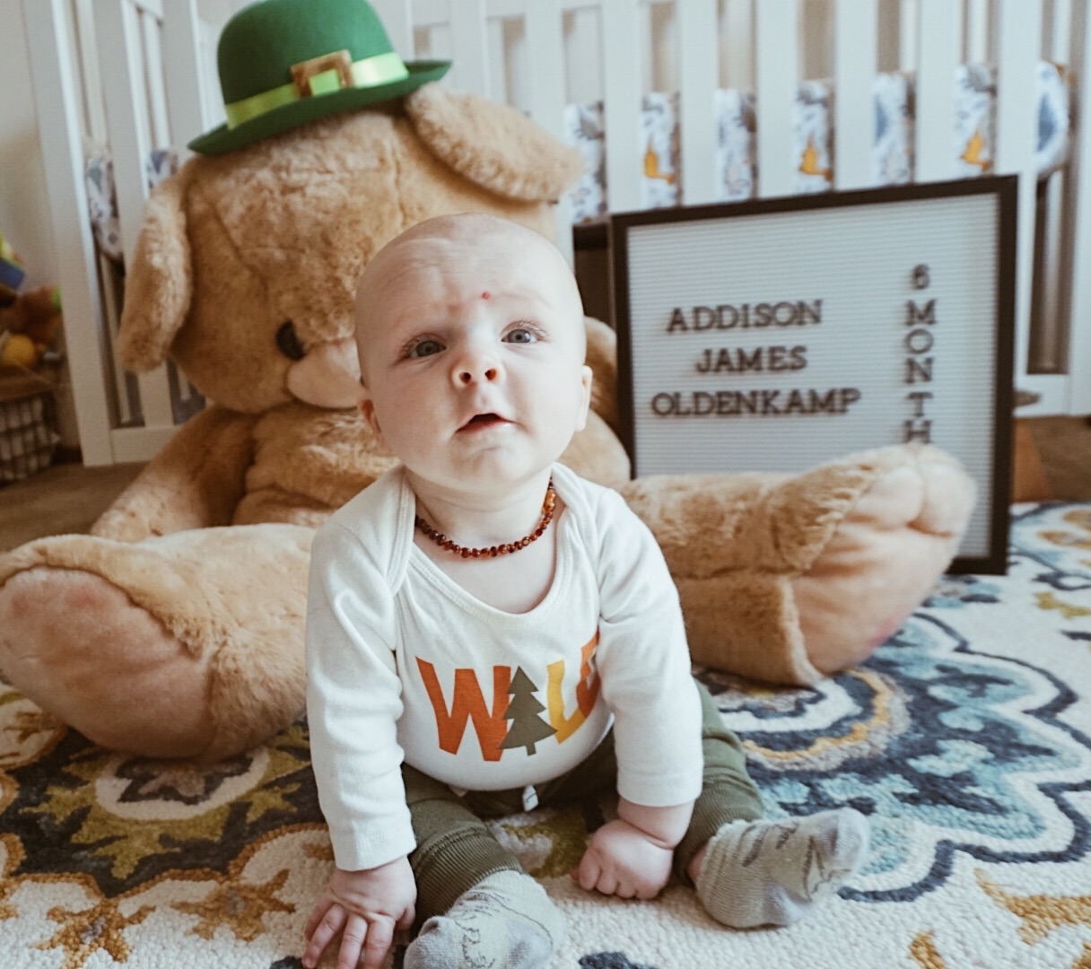 6 Month Update: Addison James | Everyday Mama