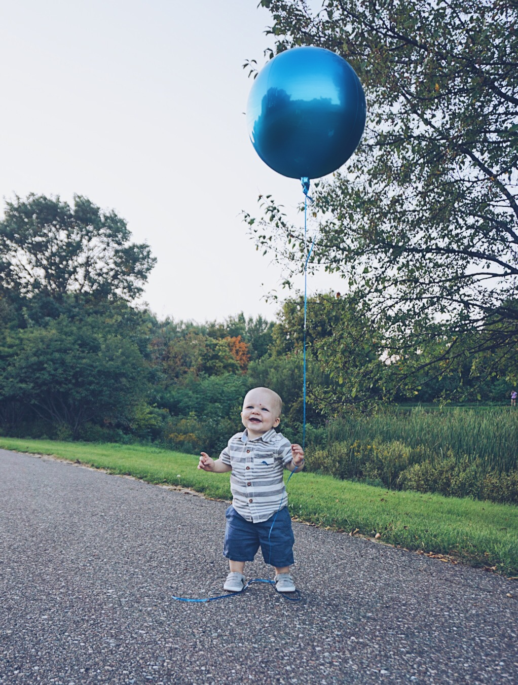 12 Month Update + First Birthday Party Details