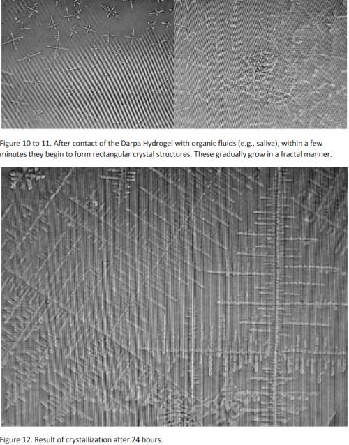 Self-Assembling Graphene Oxide Nanotech  Slovak-report-1