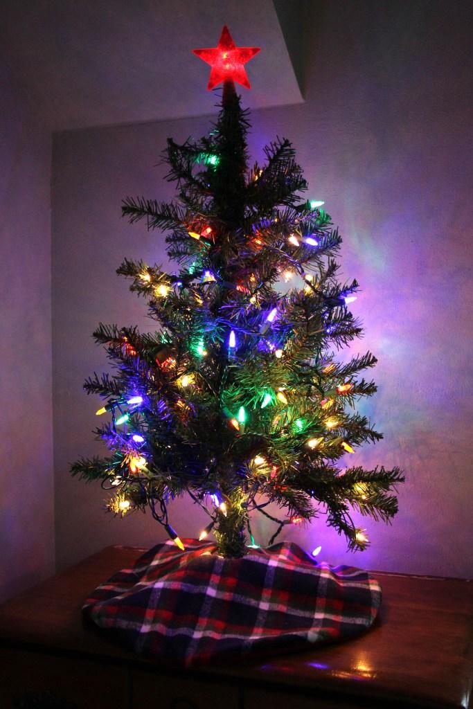 img_9631-cadens-tree