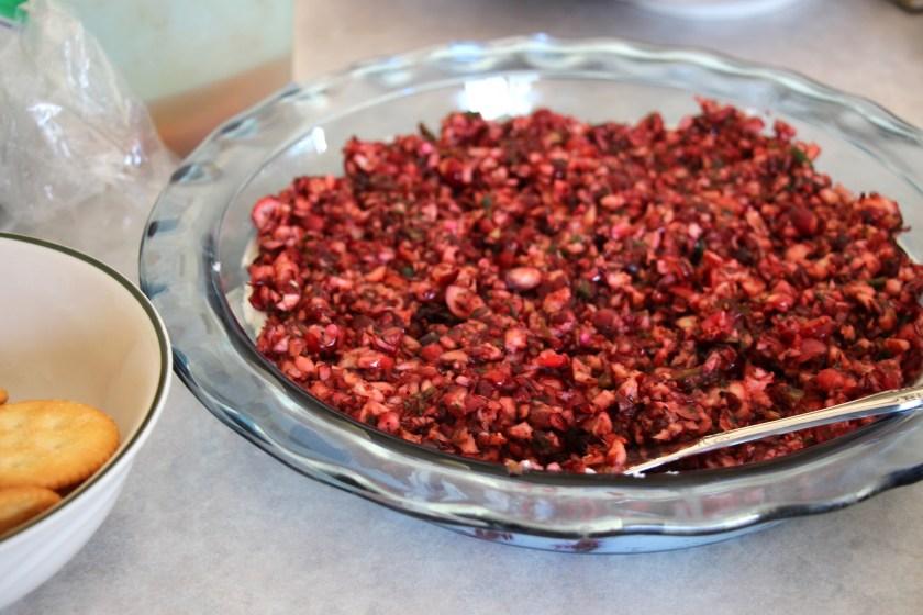 IMG_3593 cranberry dip