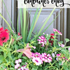 Crushing on Floral Containers
