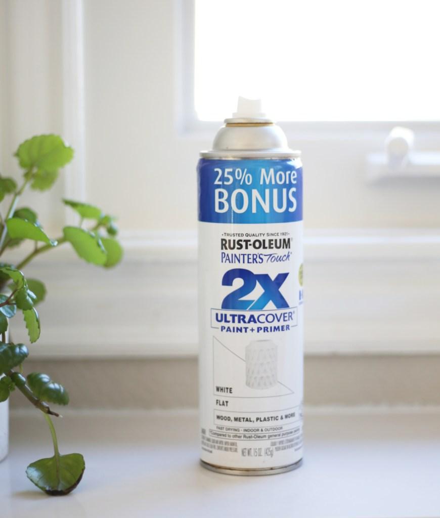 Rustoleum paint +primer spray paint for vinyl windows