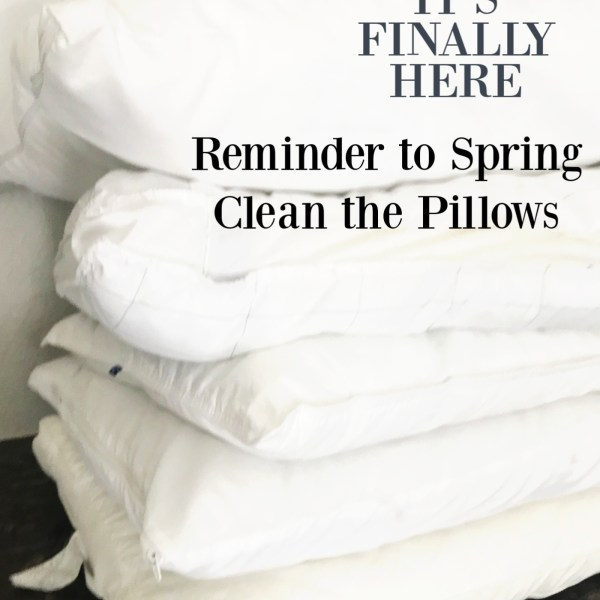 Spring Clean the Pillows + Video