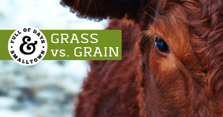 Grass Fed vs. Factory Farmed Beef