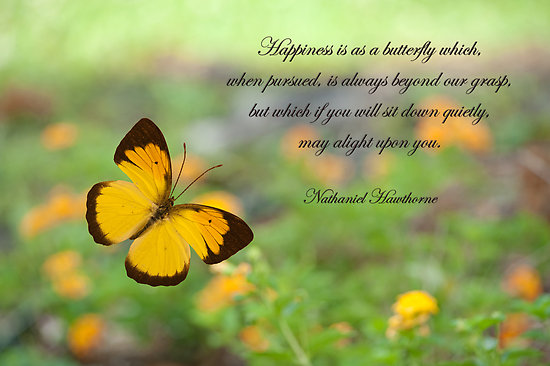 Happiness is not elusive