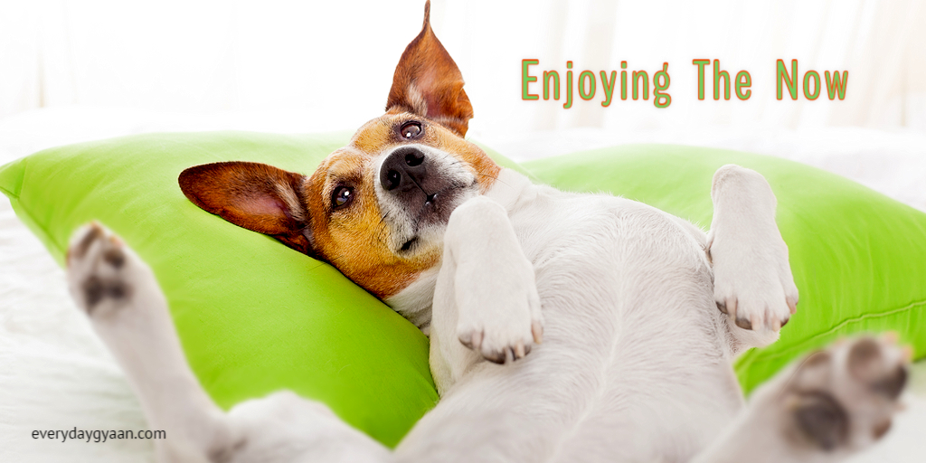 enjoying-the-now