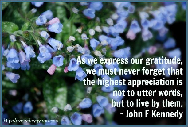 gratitudecat