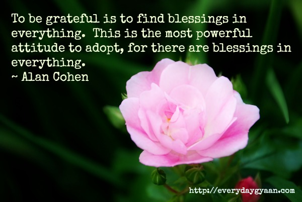 gratitudecohen