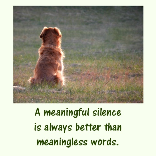Silence Is More Powerful Than Words