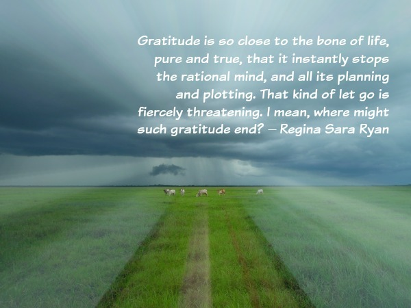gratitude is so close to the bone of life