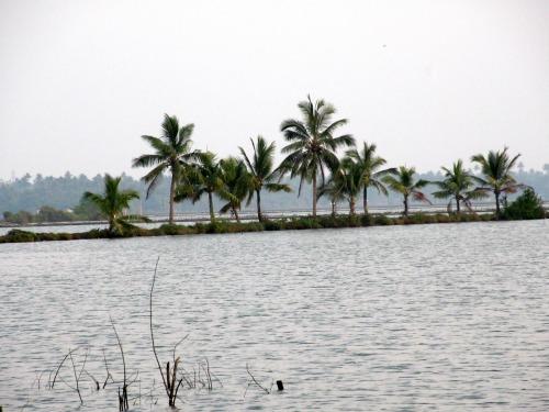 lake poyil cherai