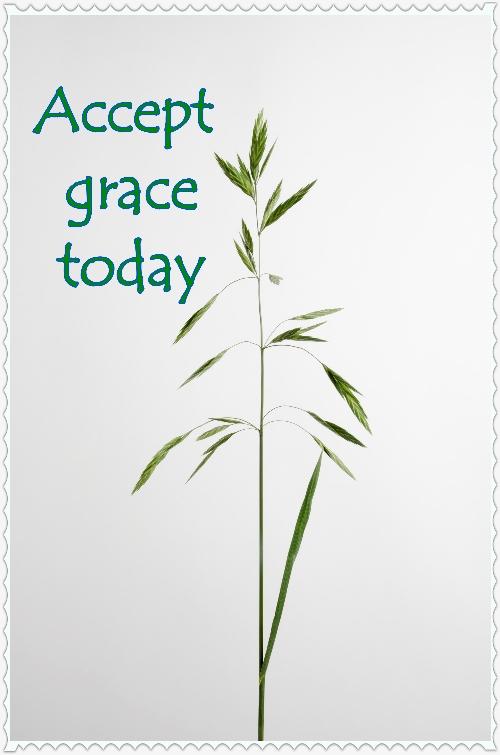 Accepting Grace  #MondayMusings #1000Speak
