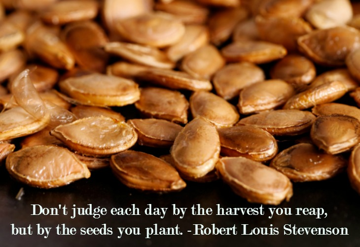 the seeds you plant today