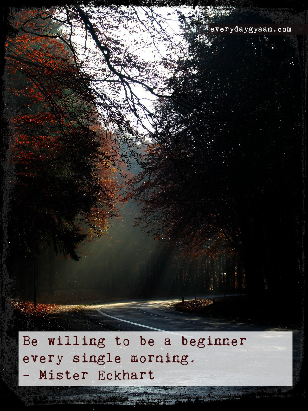 Be a beginner every single morning!