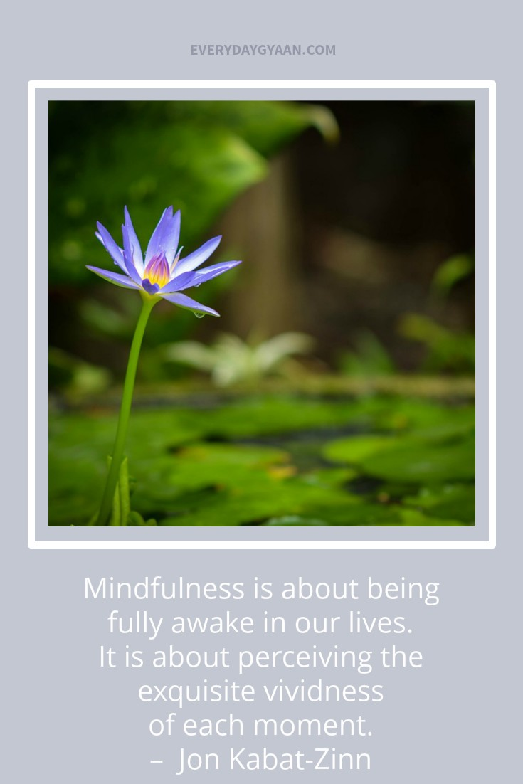 """Mindfulness is about being fully awake in our lives. It is about perceiving the exquisite vividness of each moment."" –  Jon Kabat-Zinn"