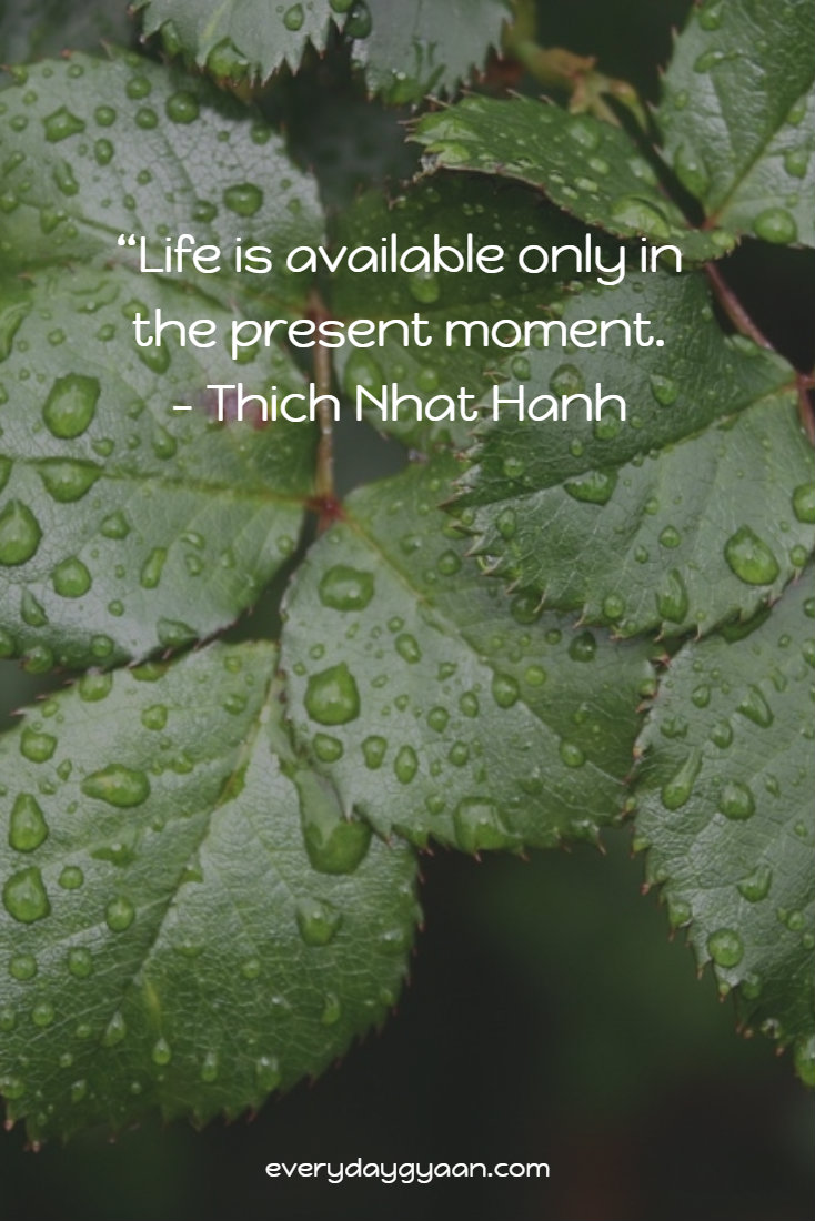Life is available only in the present moment. - Thich Nhat Hanh