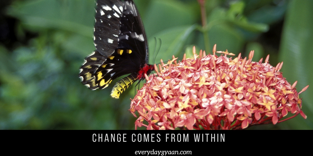 Change Comes From Within