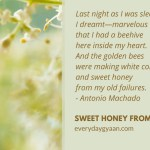 Sweet Honey From Old Failures  #MondayMusings