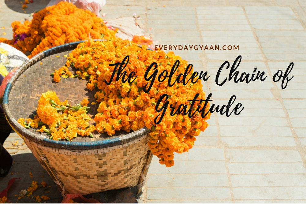 The Golden Chain Of Gratitude  #everydaygratitude