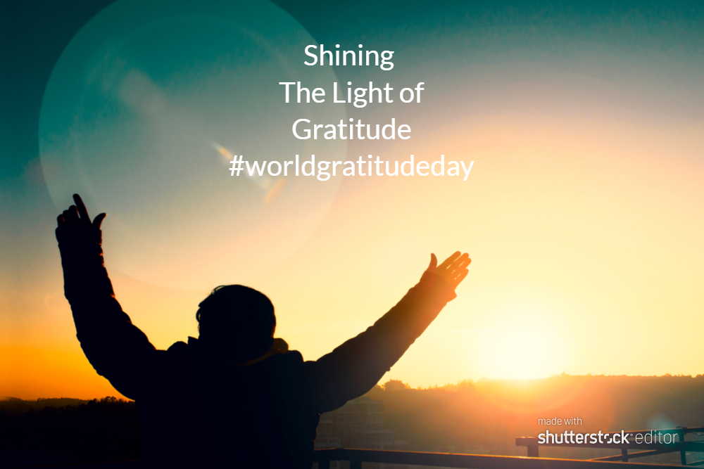 shining the light of gratitude