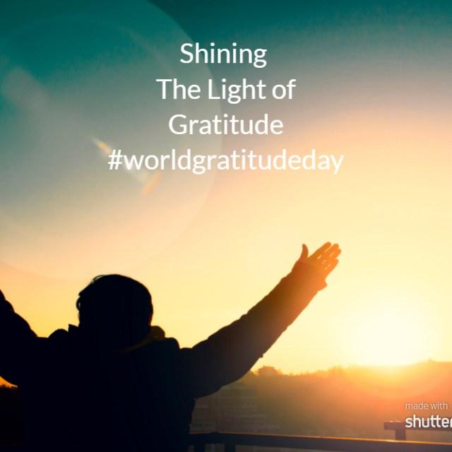 shining the light of gratitude