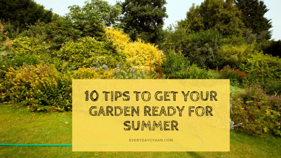 10 Tips to Get Your Garden Ready For Summer
