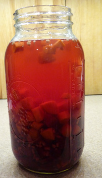 Kvass w/ Beets, Carrots & Ginger – Supertonic & Super Beverage