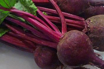 Kanji — Cultured Beet & Carrot Supertonic