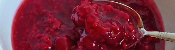 Raspberry Frozen Yogurt w/ Chunky Raspberry Sauce