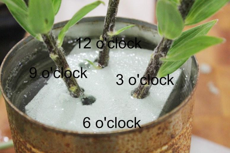 Clock position floral arranging