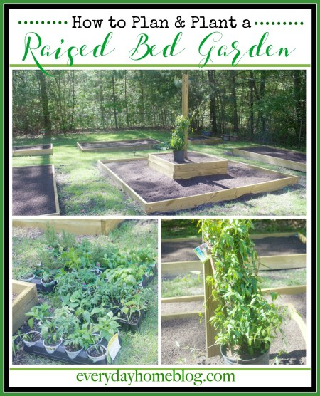 Planning and Planting a Raised Bed Garden   The Everyday Home